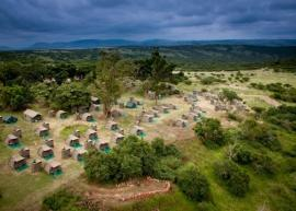 Chiefs Tented Camp