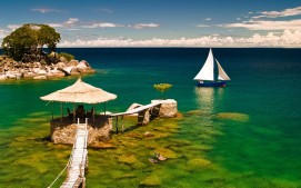 5253Tree-Lake-Malawi-1024x640
